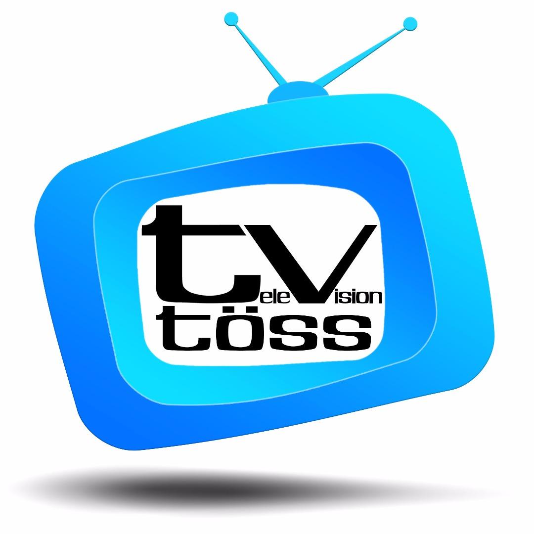 bild tv toess